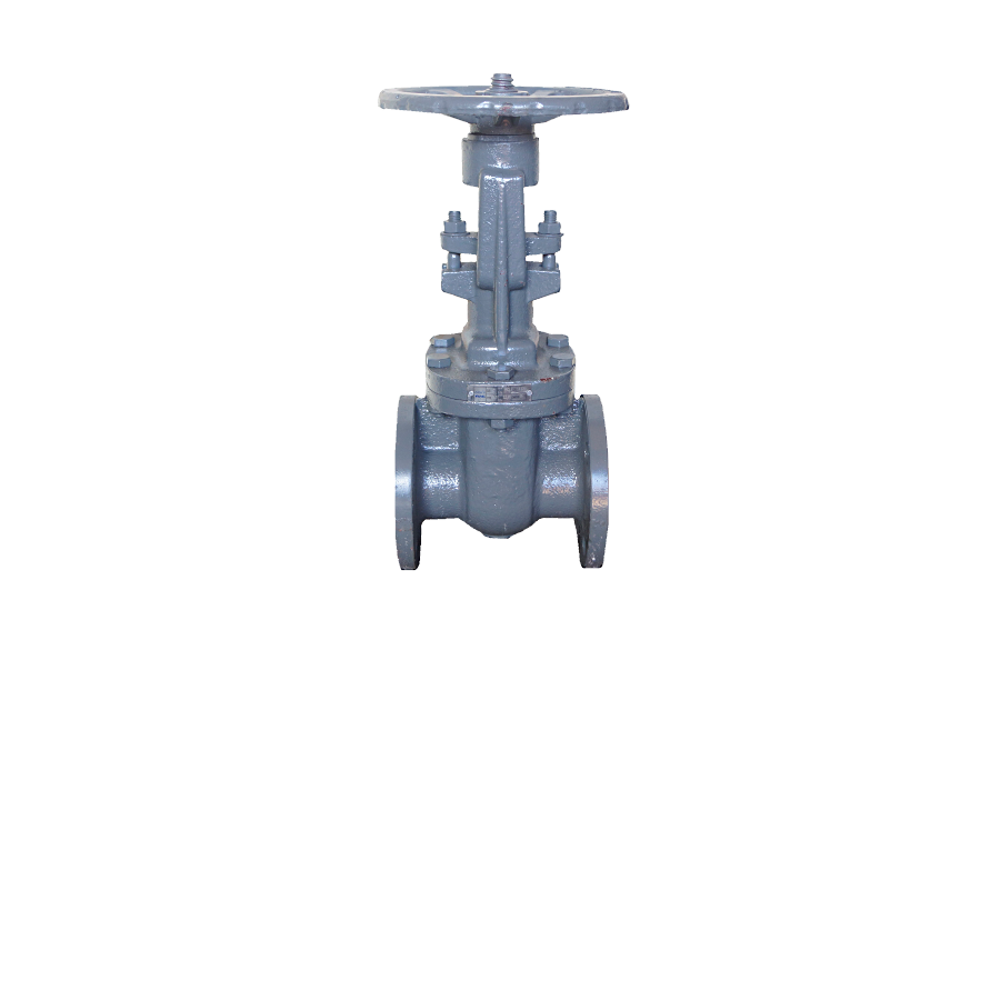 ANSI 150# Cast Iron Flange End Gate Valve - 2