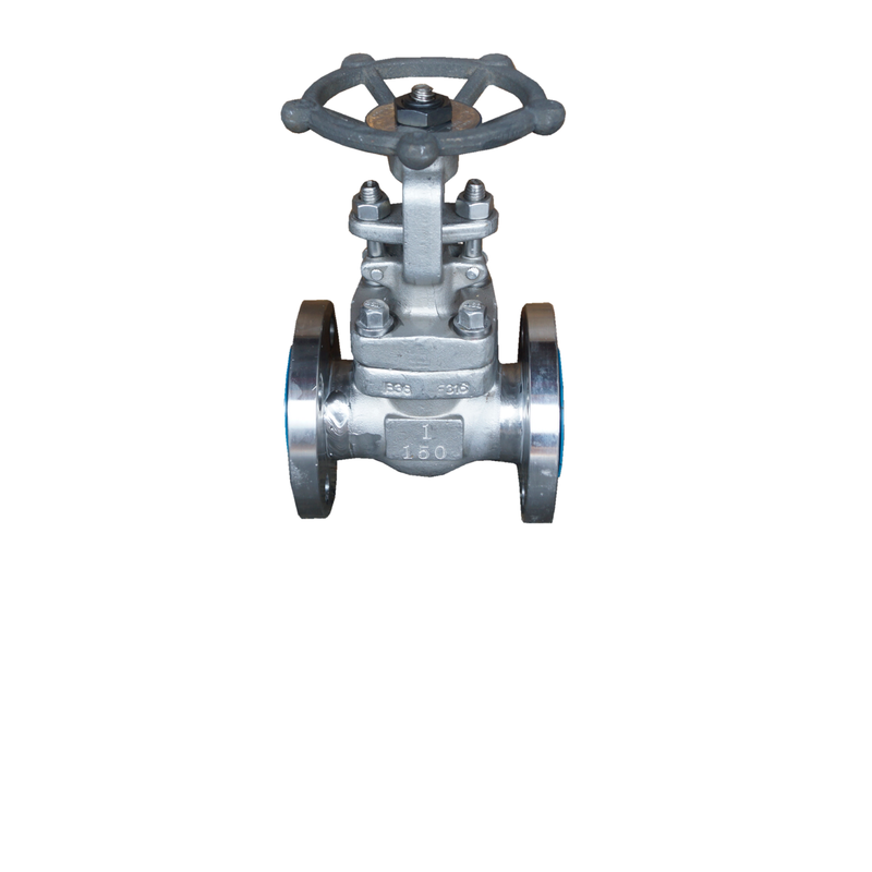 ANSI 150# SS316 Flange End Gate Valve - 1