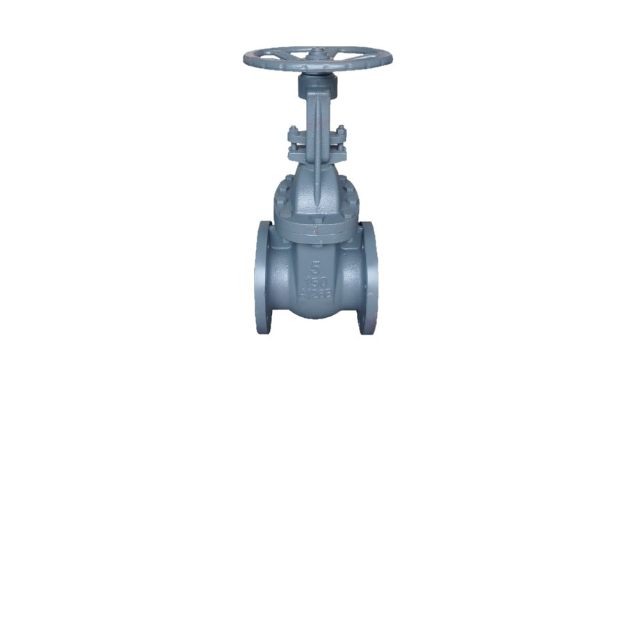 ANSI 150# Cast Iron Flange End Gate Valve - 5