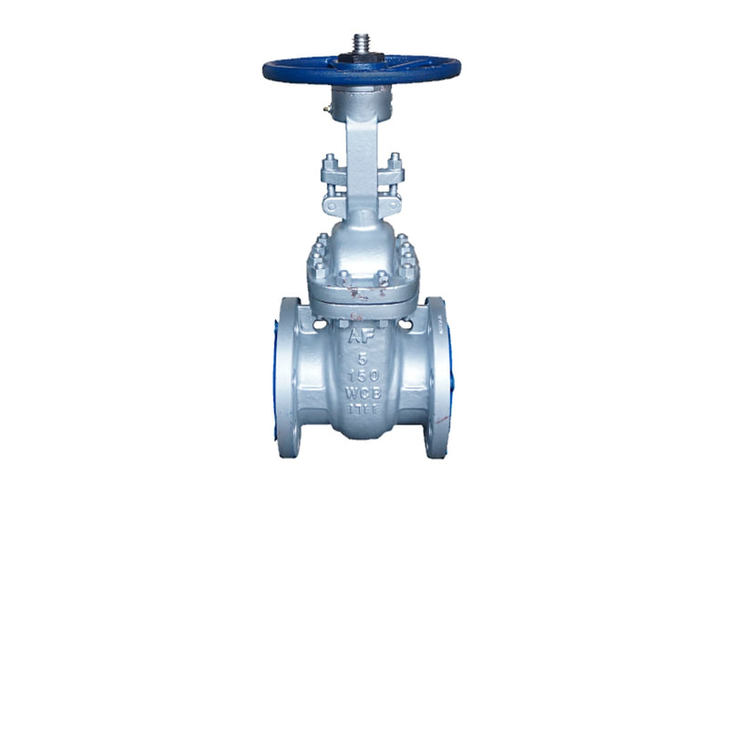 ANSI 150# Cast Steel Flange End Gate Valve - 5