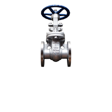 ANSI 150# SS316 Flange End Gate Valve - 2